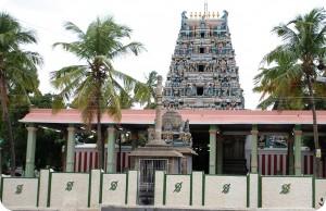 palani_temple_thiruaavinankudi