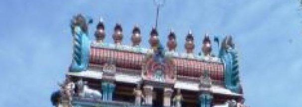 Temple Services